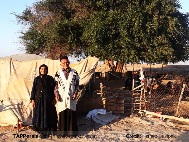 Travel with Nomads in Iran-Nomadic Lifestyle-TAP Persia